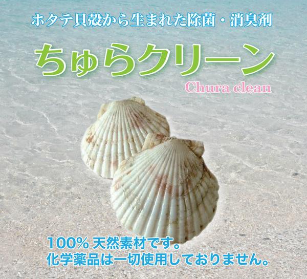 ちゅらクリーンパンフA4_page001-1